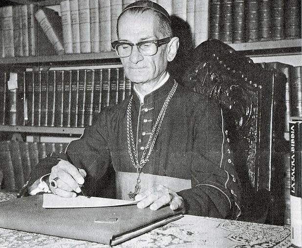 D. Castro Mayer, Bispo de Campos