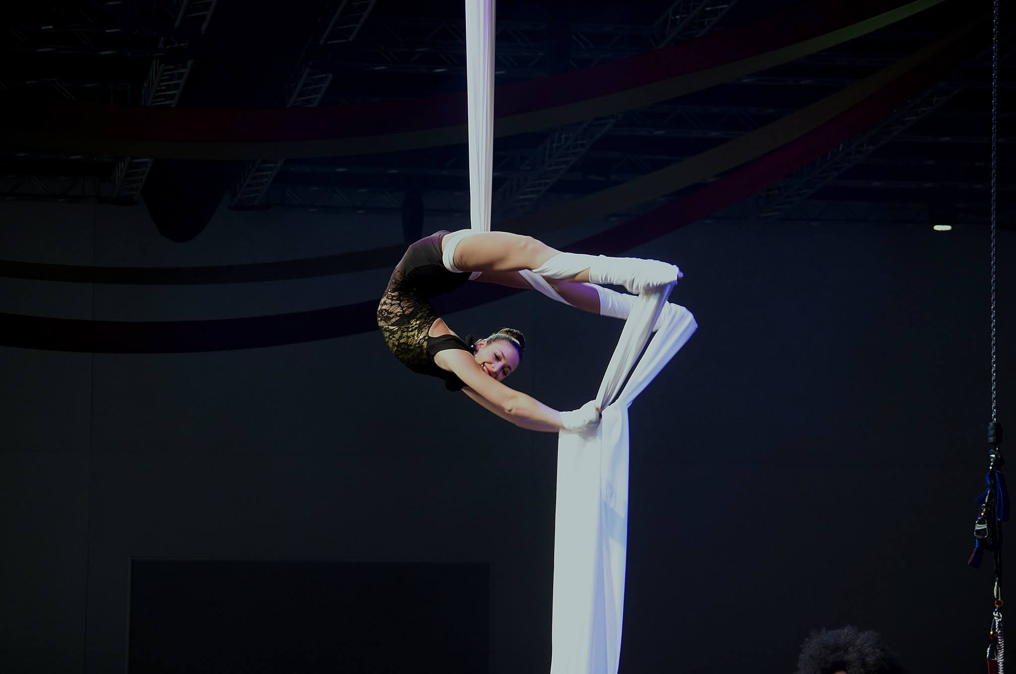 Aerial Silks by Majestic