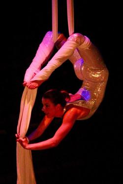 Aerial Silks by Majestic