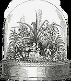 vintage terrarium