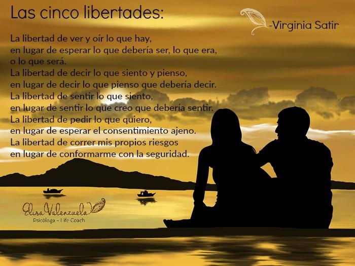las cinco libertades