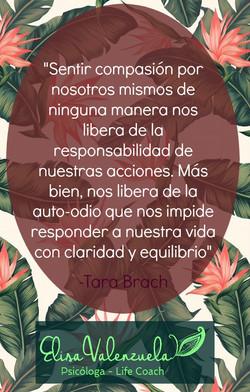 compasión (2)