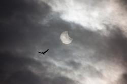 Eclissi 20 Marzo 2015