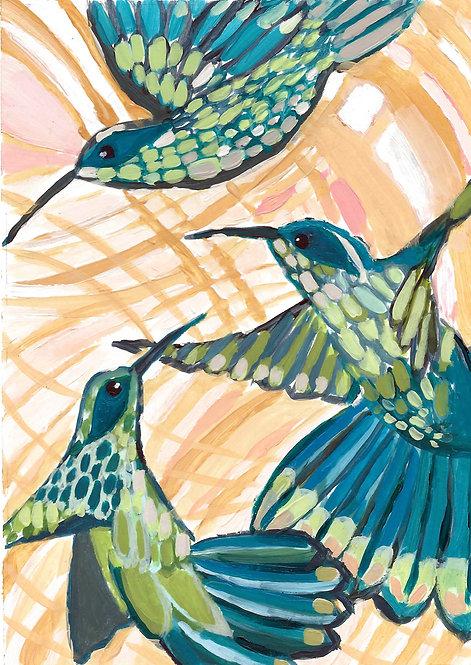 Hummingbirds in Rajahmundry, India.
