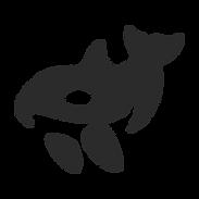 Negative Space Orca