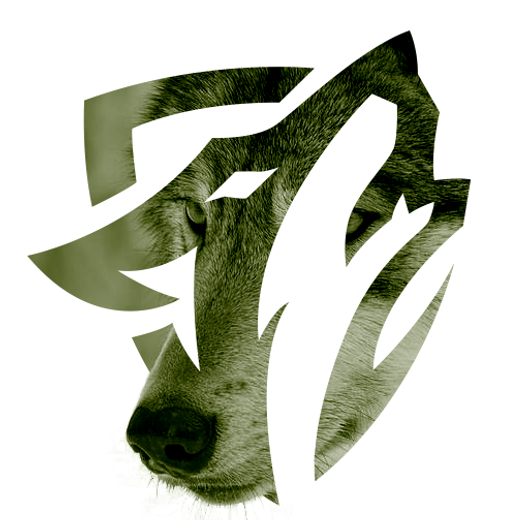 Howling wolf shield.png
