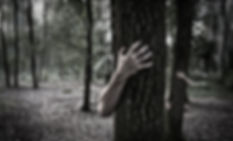 Carved creepy hands and trees image.jpg