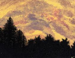 Golden Sunset Pines