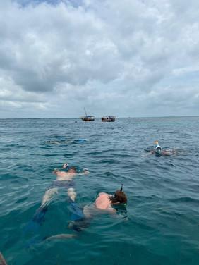 Snorkling på koralrevet Zanzibar