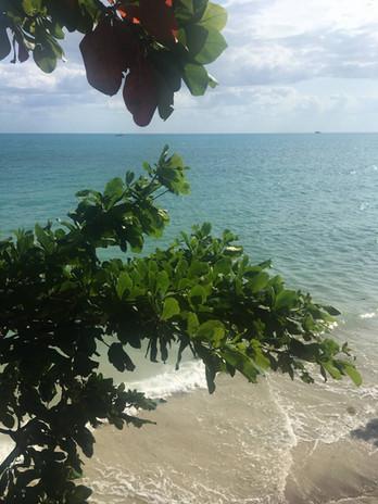 Stranden ved Sunny House