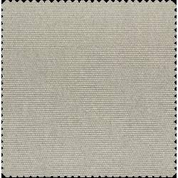 101 gris claro