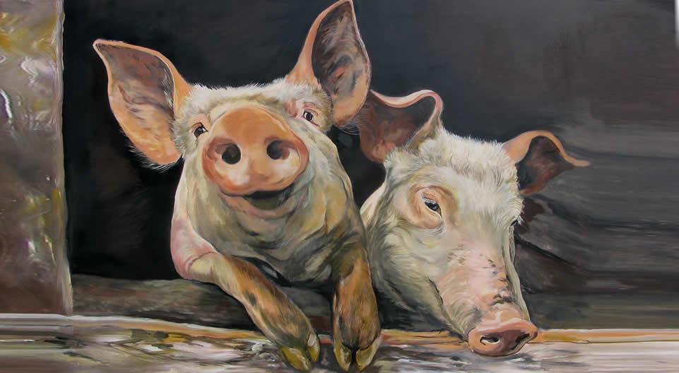 schilderij varkens