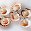 Thumbnail: Half Shell Scallop with Roe 8/9