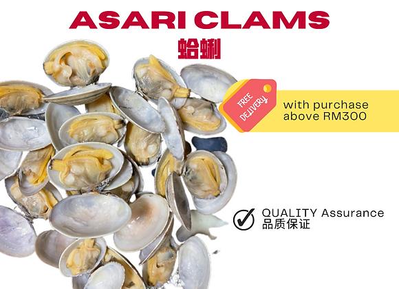Asari Clam
