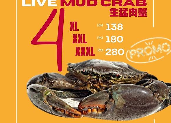 M5 (500-590g) Crab X 4 Promo