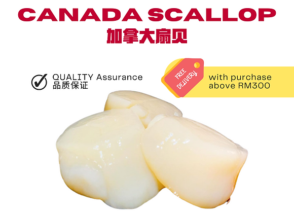 Canadian Scallop 2.27kg/pack