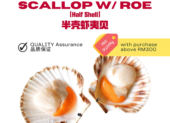 Half Shell Scallop with Roe 8/9CM