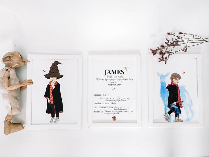 Trio d'affiches (le patro à partir d'une photo de l'animal)