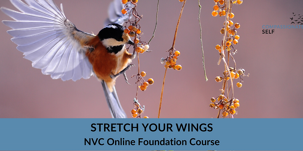 6-week NVC foundation course
