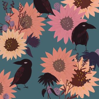 Sunflower Crows