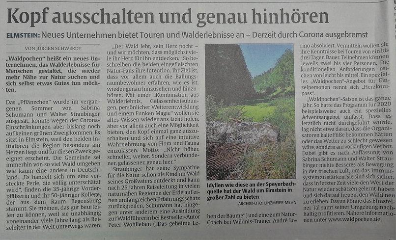 Rheinpfalz Bericht .jpg