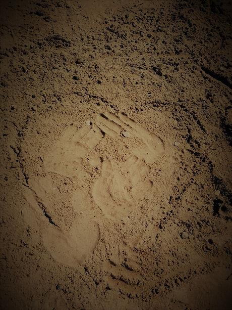 Heart Hands2.jpg
