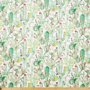 Multi cactus