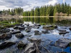 Schwarzer Teich bei Nordhalben