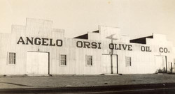orsi olive oil factory