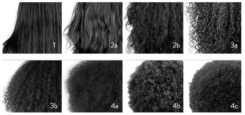 8 verschiedene Haartypen