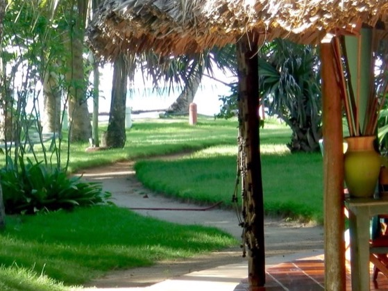 Hotel Coyamar , jardin