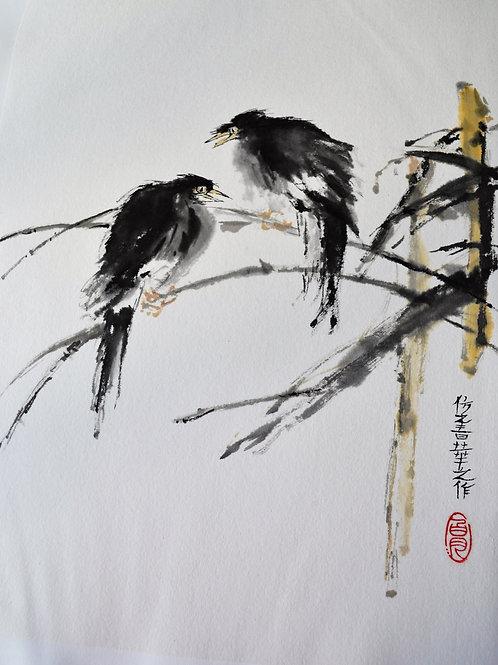 Minor Birds