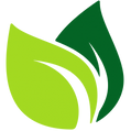 cropped-cropped-leaf-vector-2_edited.png