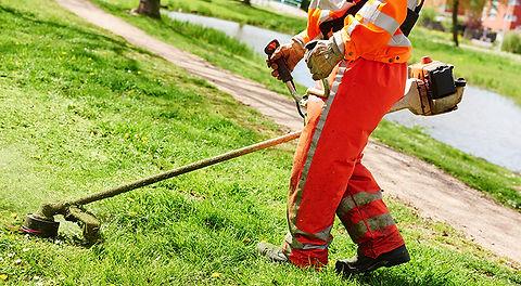 cutting-grass.jpg