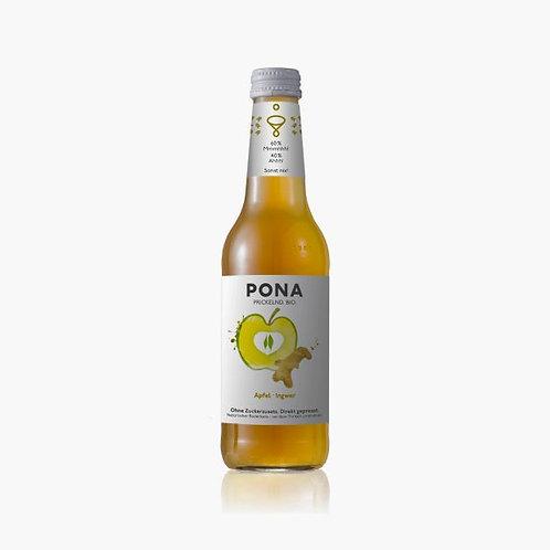 6x PONA Apfel Ingwer