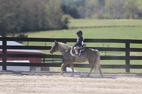 45. Coached GAYP Equitation