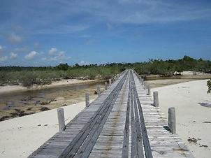 Ras Kisimani Beach.jpg