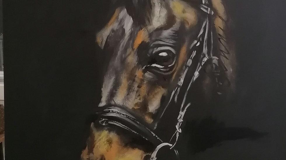Acrylique sur toile, Horse