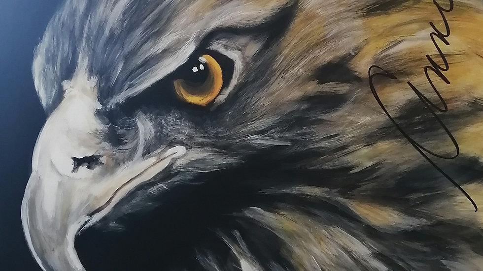 Acrylique sur bois , Buse