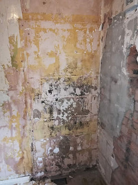 damp shower wall.jpg