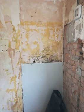damp shower wall repiard.jpg
