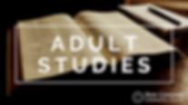 Adult Studies.png