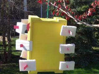 Una joven norteamericana de 13 años crea un dispositivo que genera energía limpia pos sólo 5 dólares