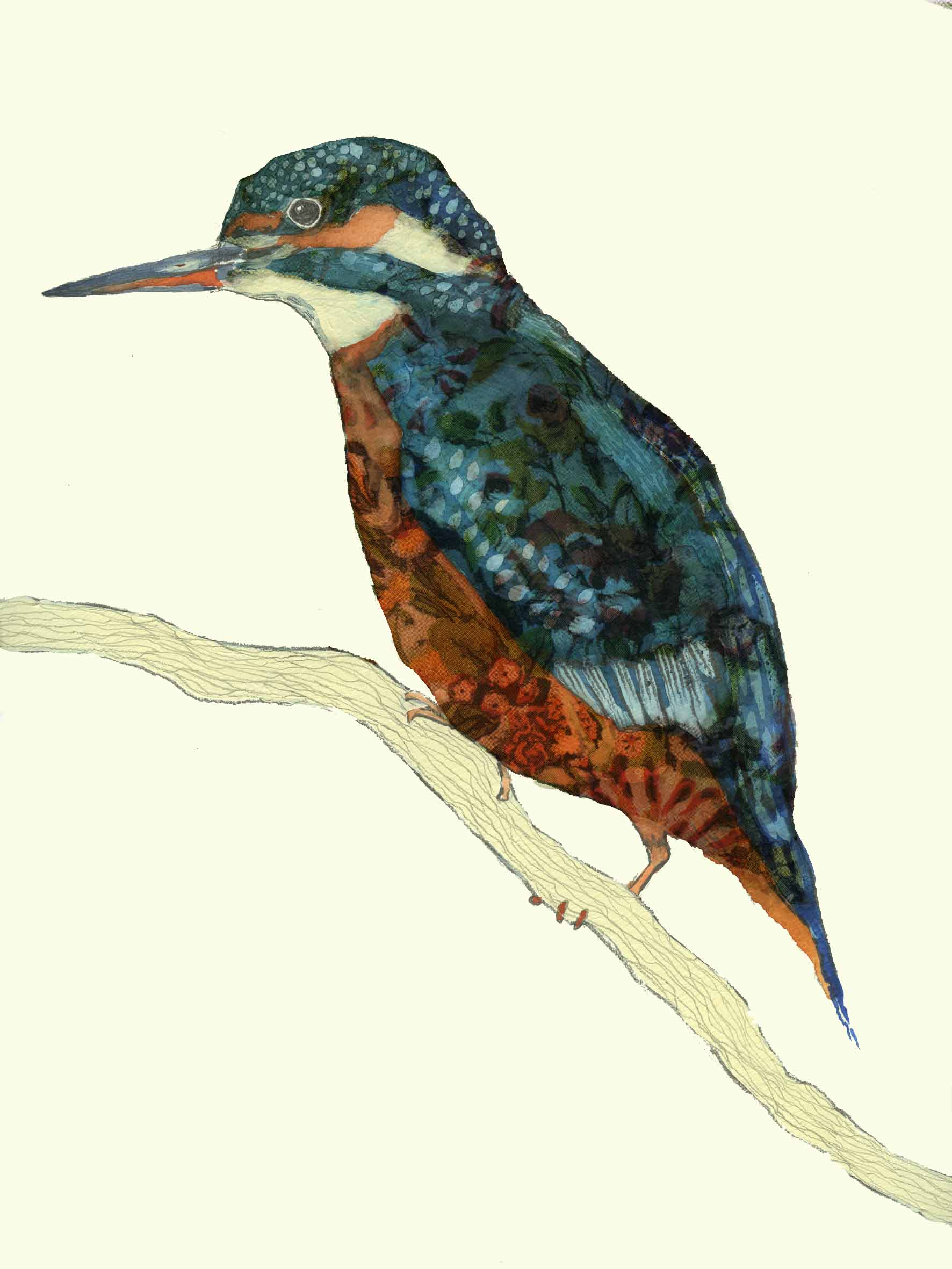 Quiet Kingfisher