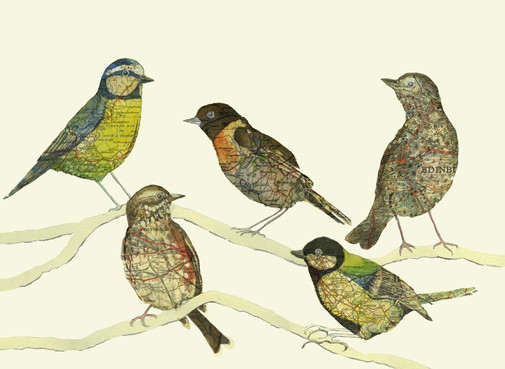 Jo's Birds.