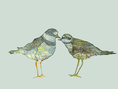 """Gift Card - Bespoke print with up to 2 birds or animals. Mounted to 10""""x12"""""""
