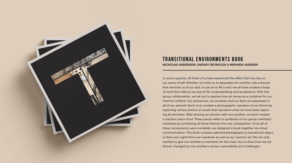 TRANSITIONAL ENVIRONMENTS BOOK MOCKUP