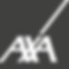 AXA GRIS.png
