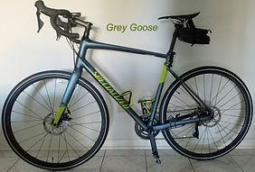 Grey Goose 1.jpg