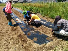 第7期ベジモ有機農業スクール@愛知校スタート!